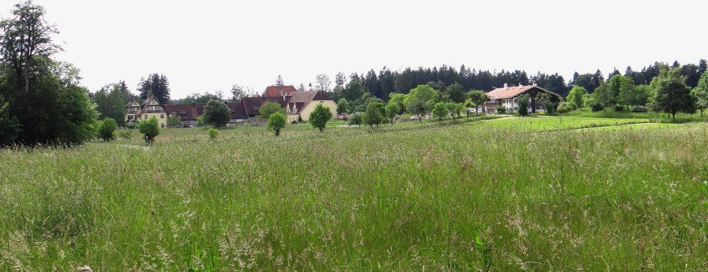 Aussicht über artenreiche Wiesen
